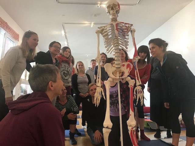 anatomie yogalehrer ausbildung 2020 Karlsruhe